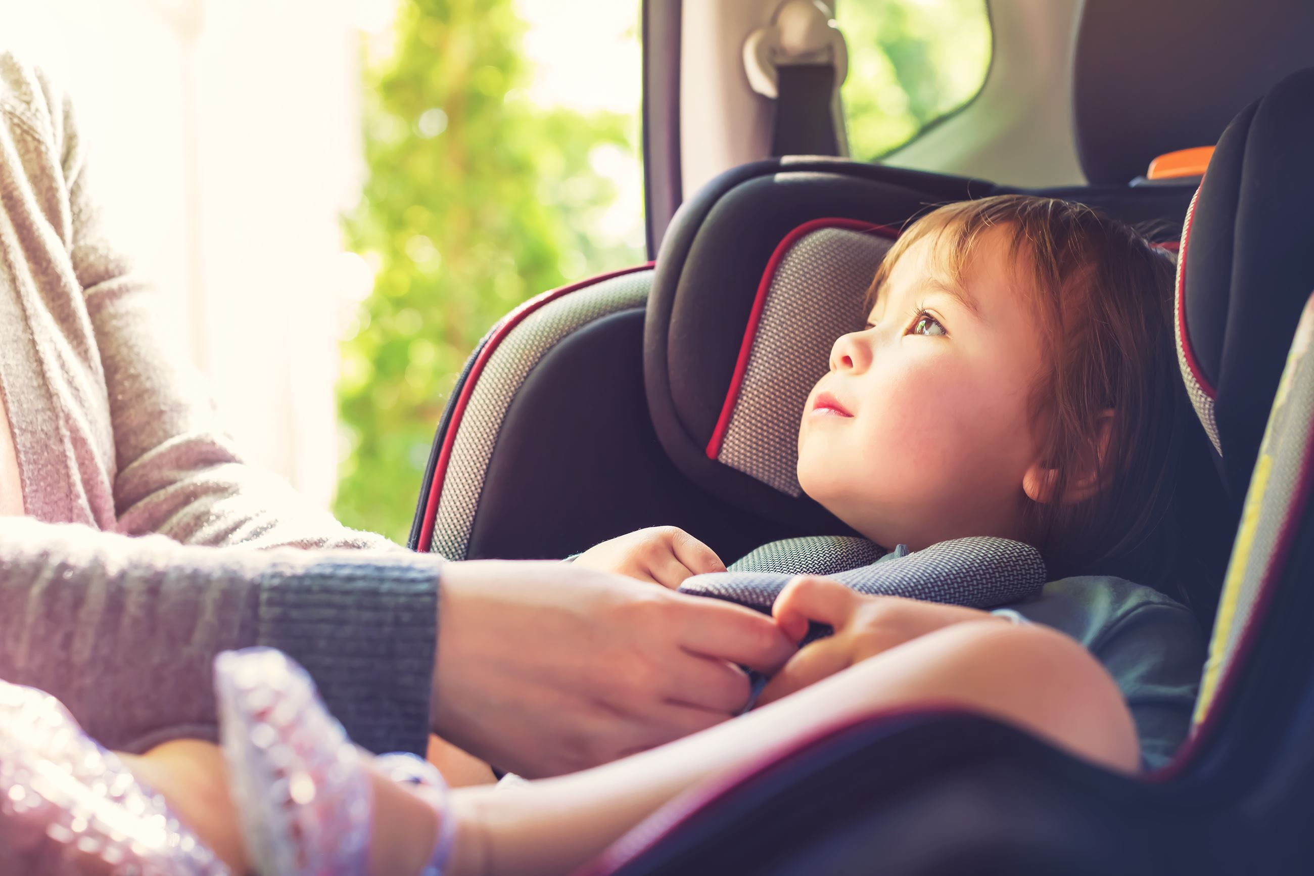 graphicstock-toddler-girl-buckled-into-her-car-seat_Hv-e7RUhNuZ